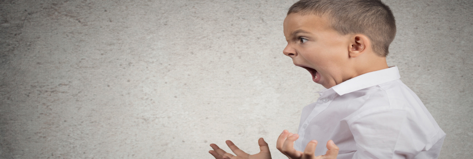 Get comfortable with Anger with Caroline Lucas Anger Management coach Exeter